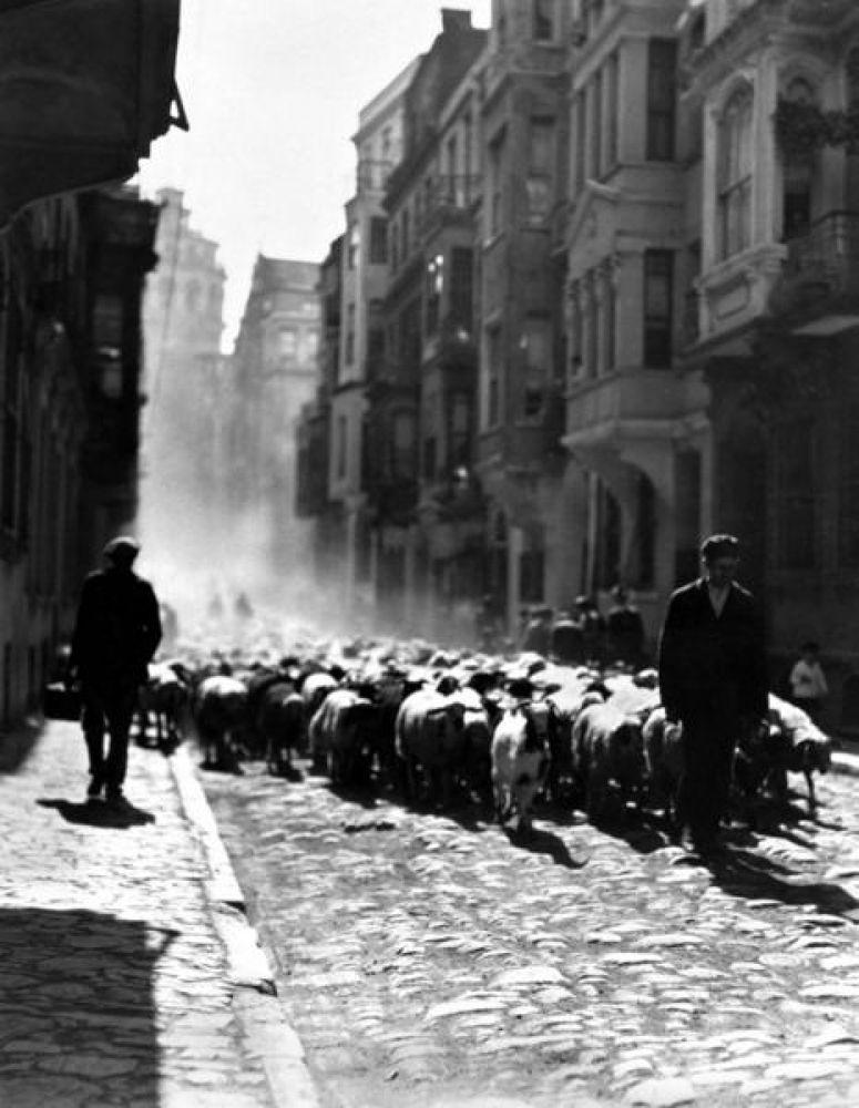 Kurbanliklar istanbul 1926 by tropikyasam