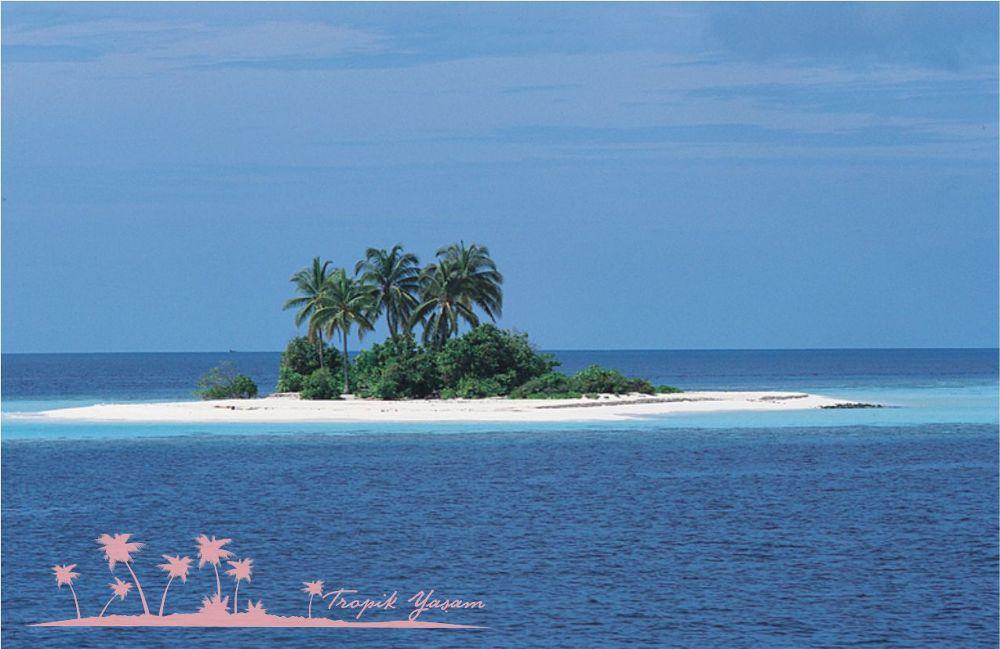 island-1 by tropikyasam