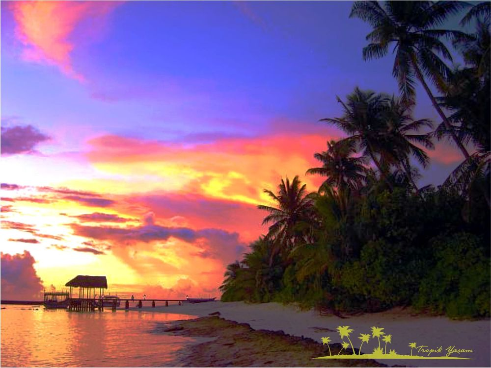 sunset by tropikyasam