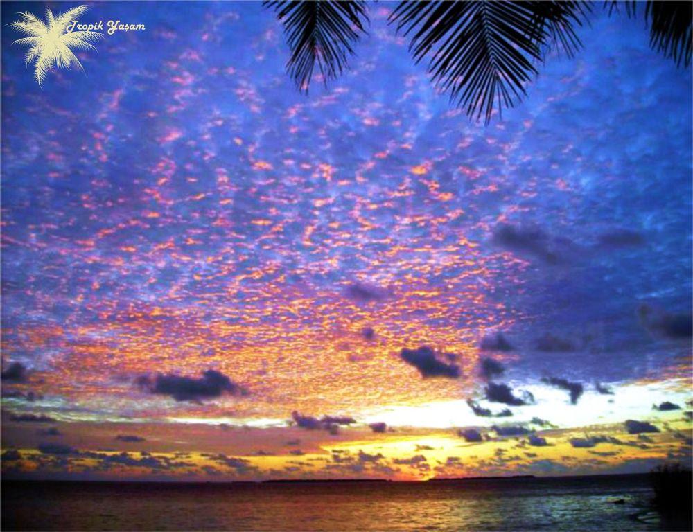 dayfoto by tropikyasam
