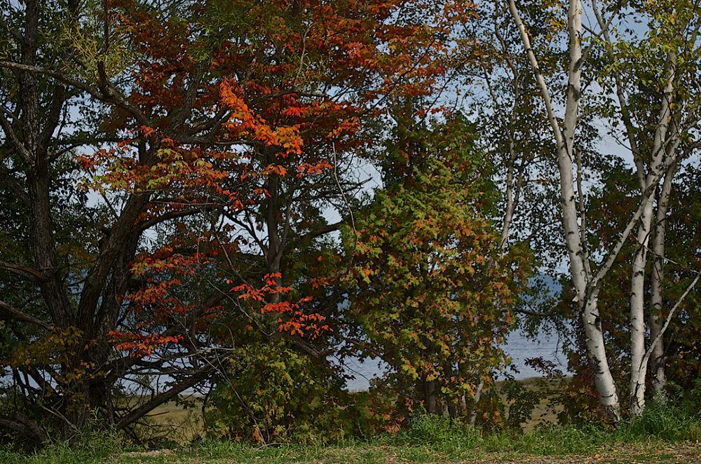 Somewhere along the Saguenay River, Québec, Canada. by carol dallaire