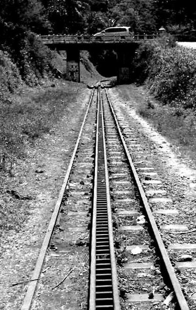 rail train by Andi kho