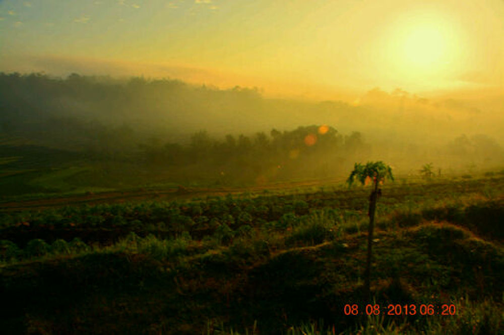 matahari pagi dan kabut by Andi kho