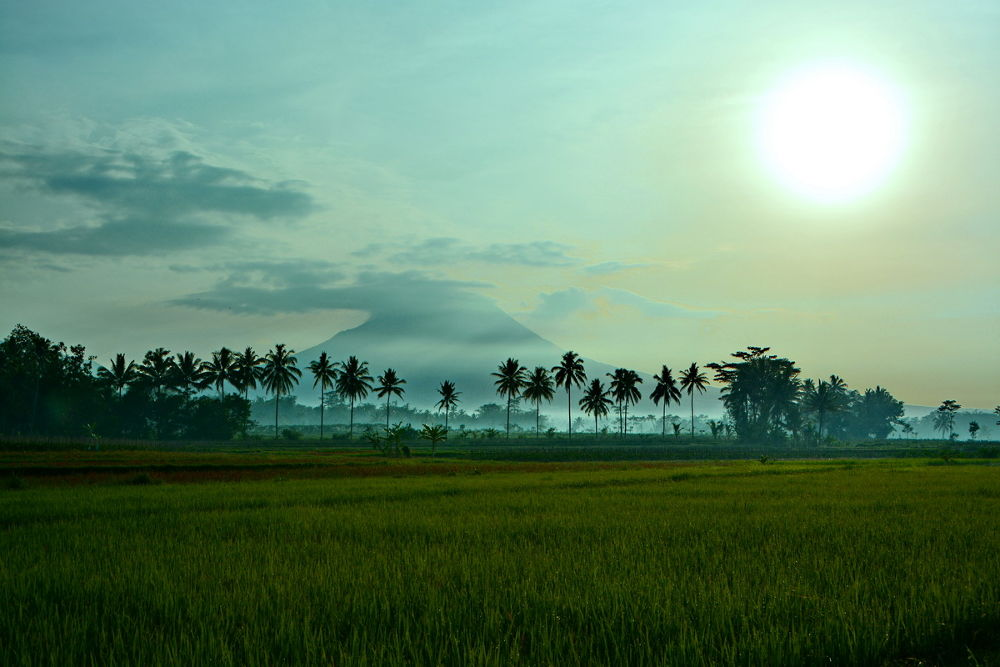 village by Andi kho