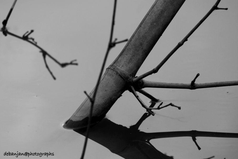 shadow in water by Debanjan Mondal