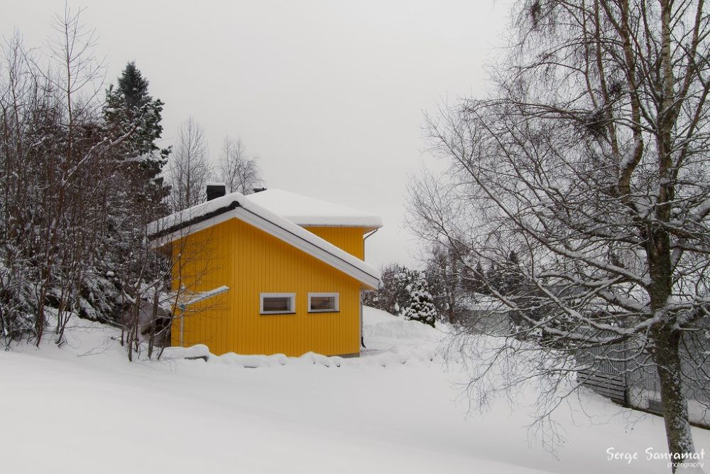 Yellow by Serge