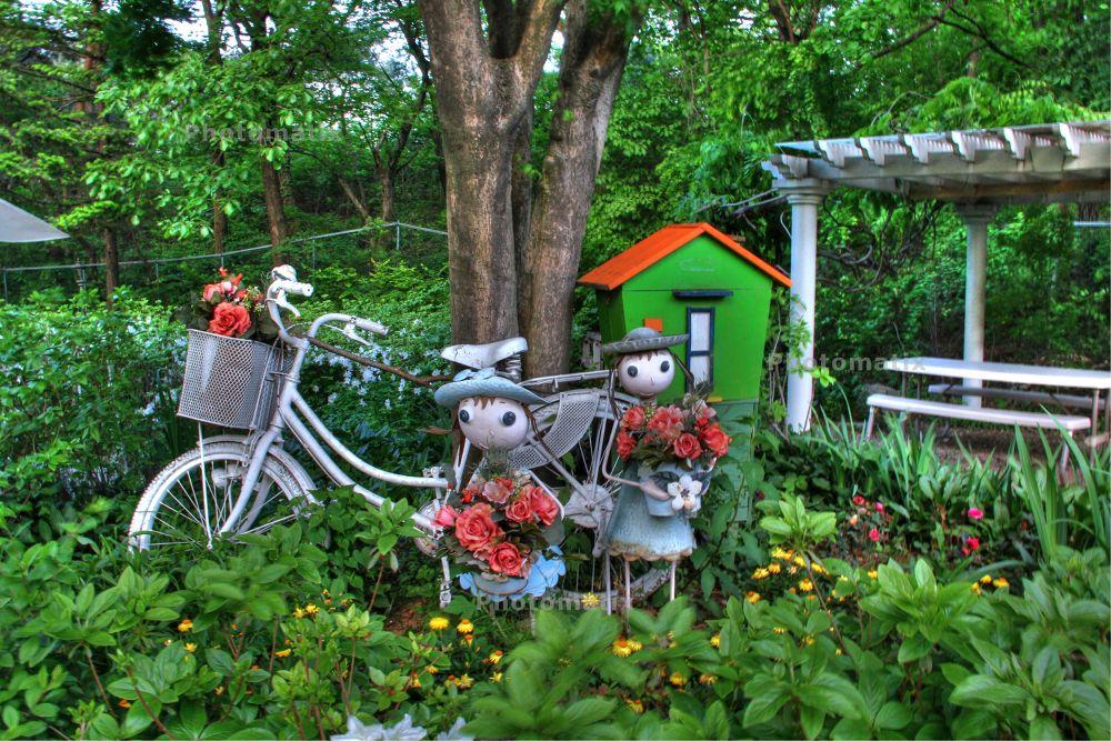 Garden  by Alnufaily