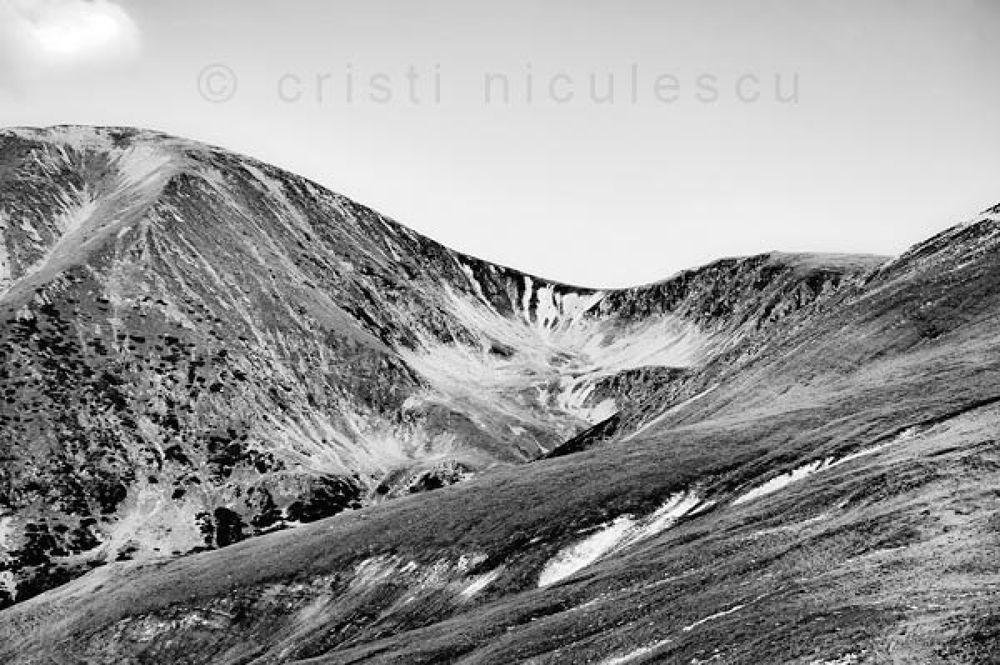 Alpine by Cristi Niculescu