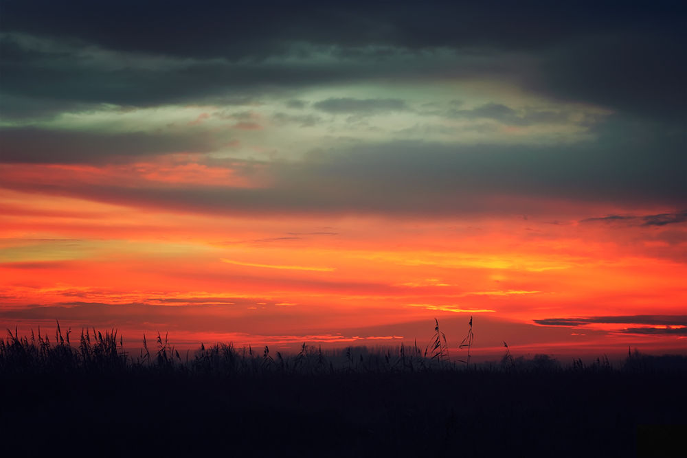 Photo in Random #morning #home #hungary #sunrise #red #redly #november #autumn #sky #ypa2013 #nature