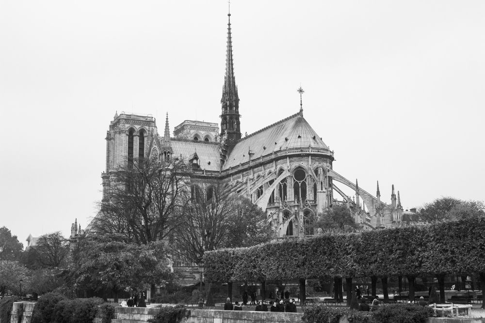 Notre Dame by Danielle Evrim