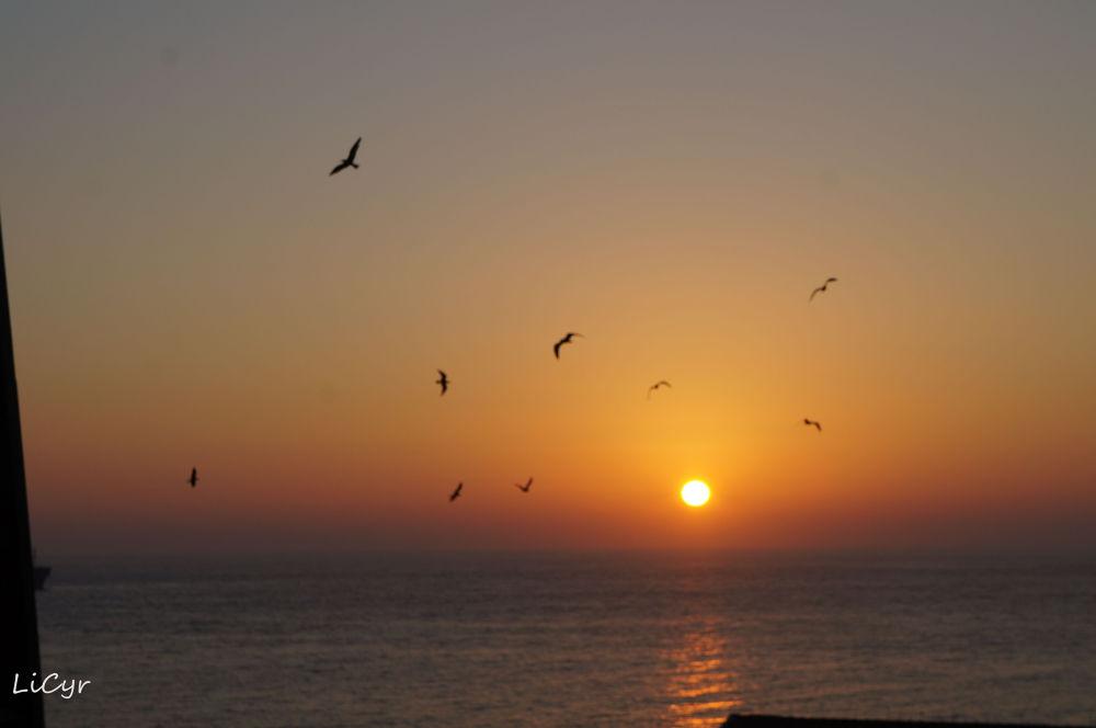 coucher soleil by lisecyr