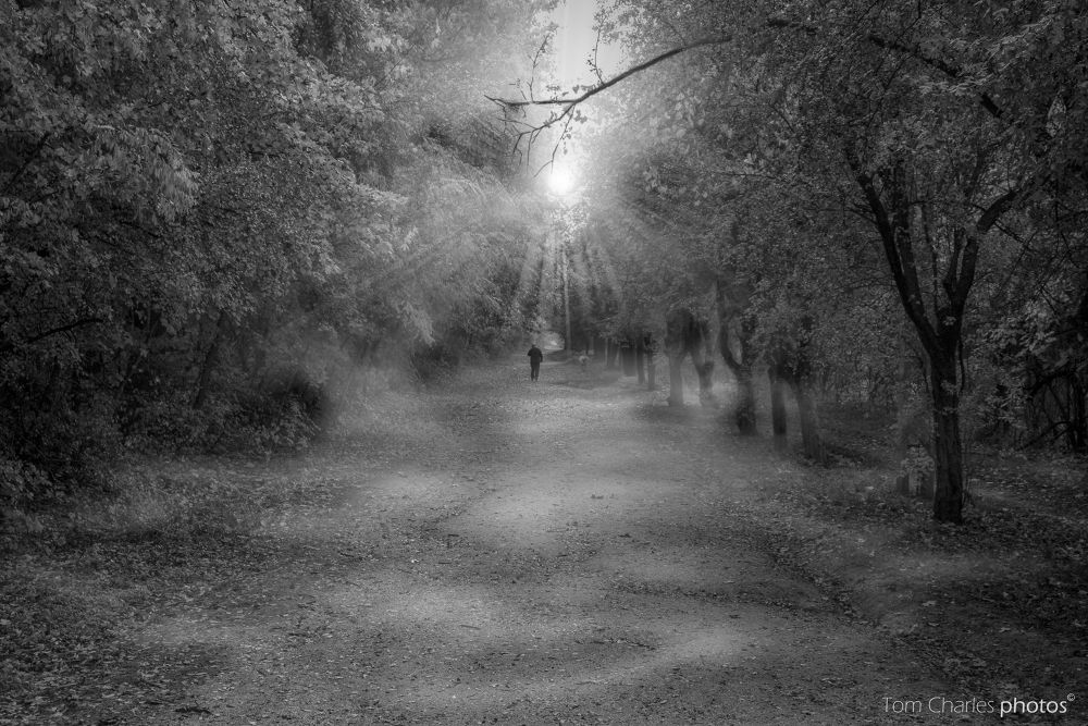 Passing (elmúlás) by TomCharlesphotos