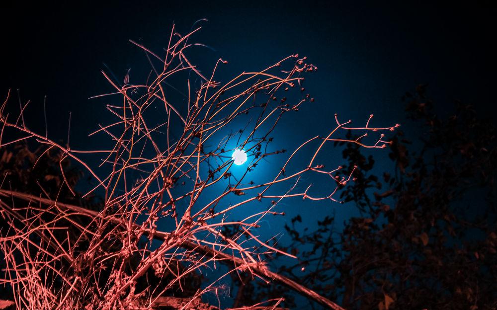 Photo in Random #blue moon #moon #baku #azerbaijan