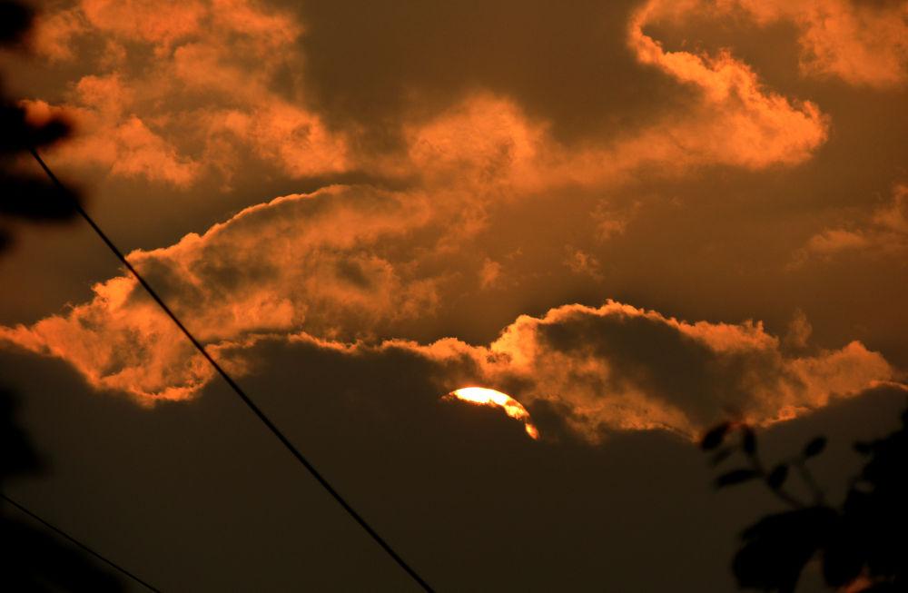 DSCN7229 by aarti swami