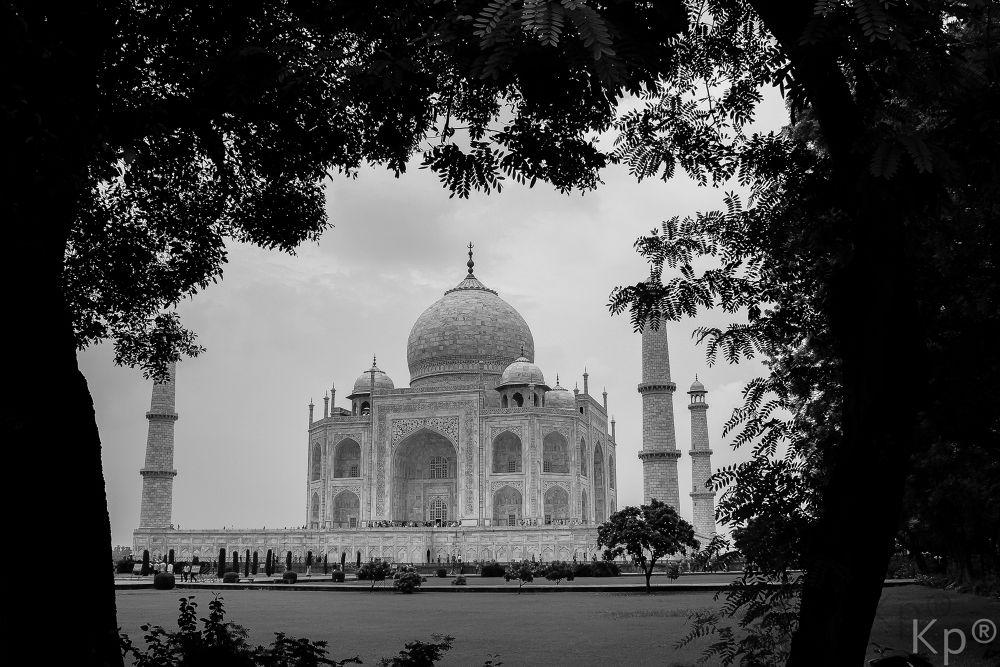 Wah Taj  by Nitin Kanjoos