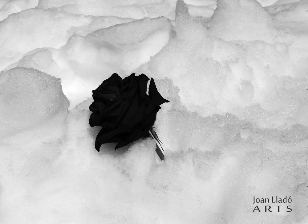 melancolia II by joanlladoARTS