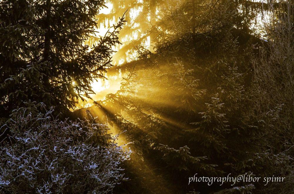 paprsky slunce by liborspimr