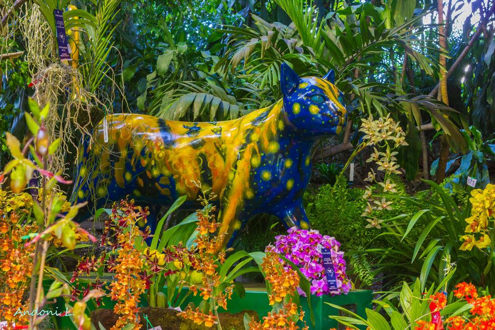 gata en el jardín by andoni leunda