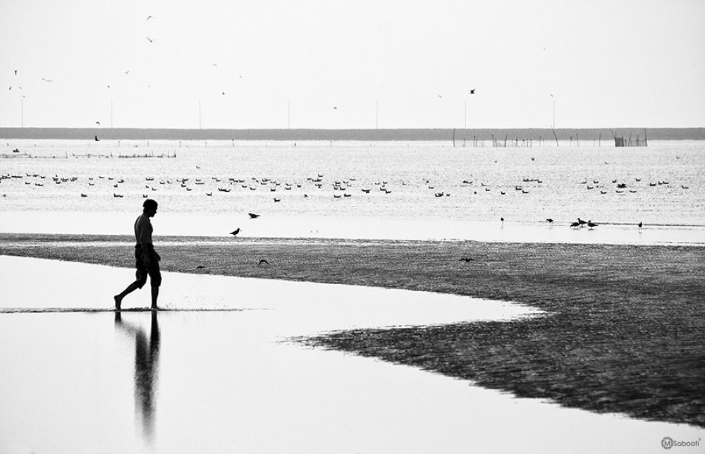 Untitled by masoud sabooti