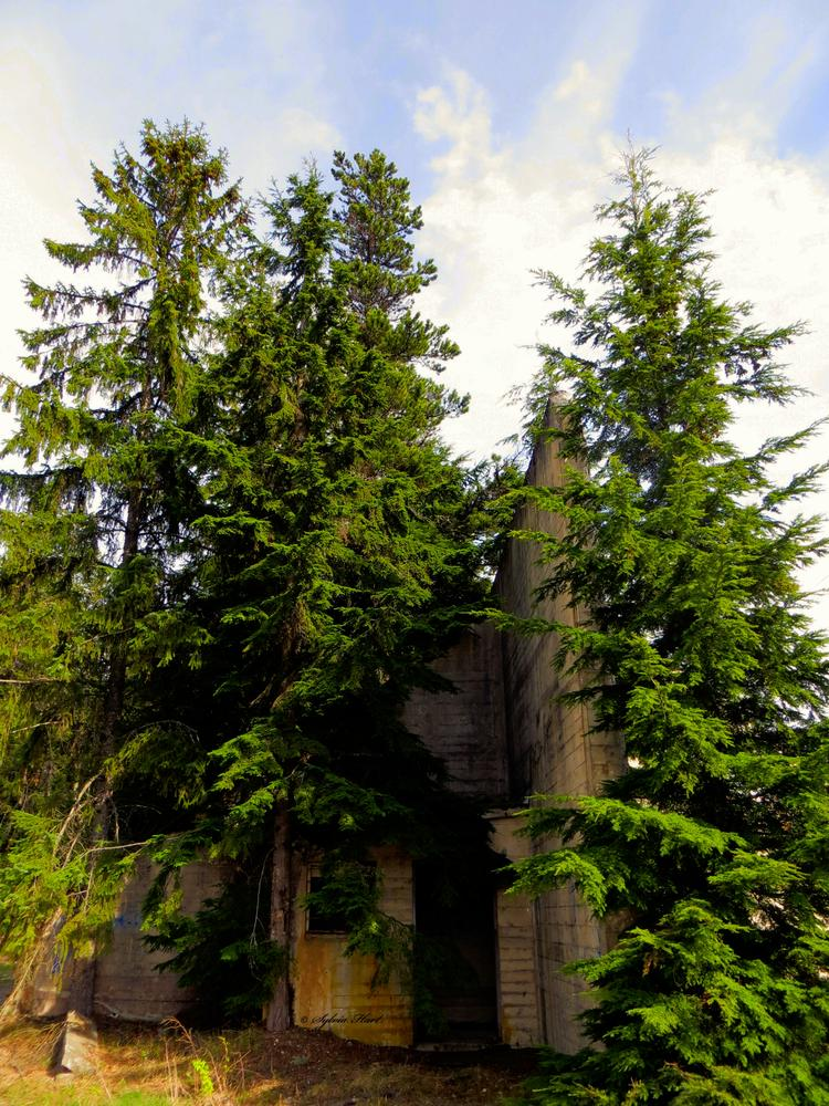 Photo in Architecture #abandoned #old #shelter