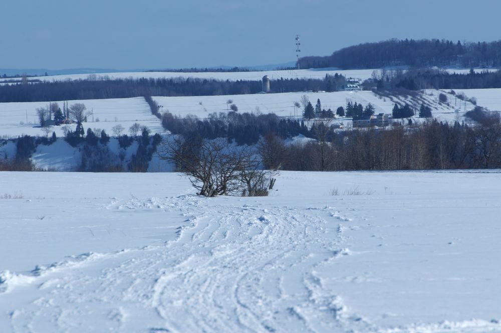 Les champs au nord de Neuville by norbertleblanc374