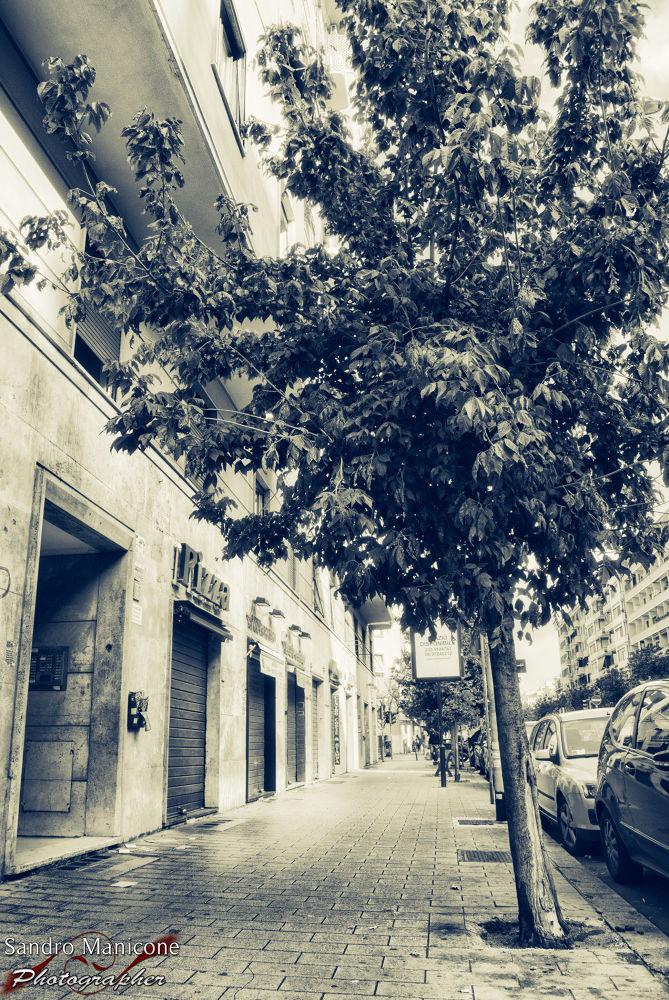 Street... by Sandro Manicone