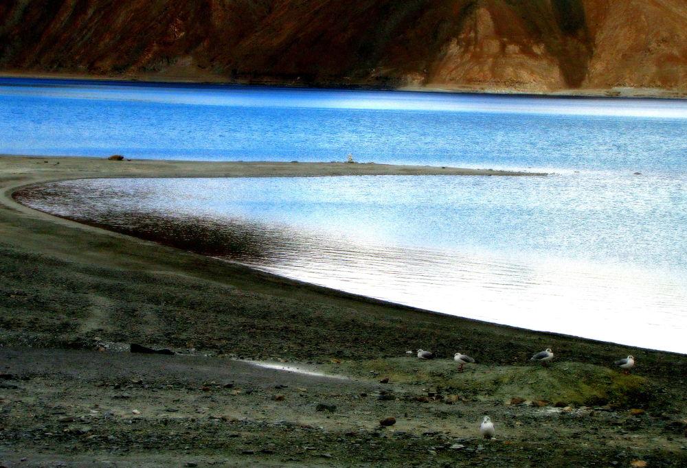 Pangong Lake by saharajib