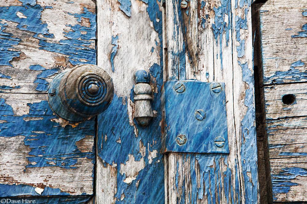 Bluewood by davehare
