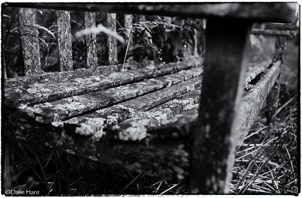 Photo in Urban #bench #seat #wood #wooden #old #derelict #dave hare #rot #rotten #cemetery