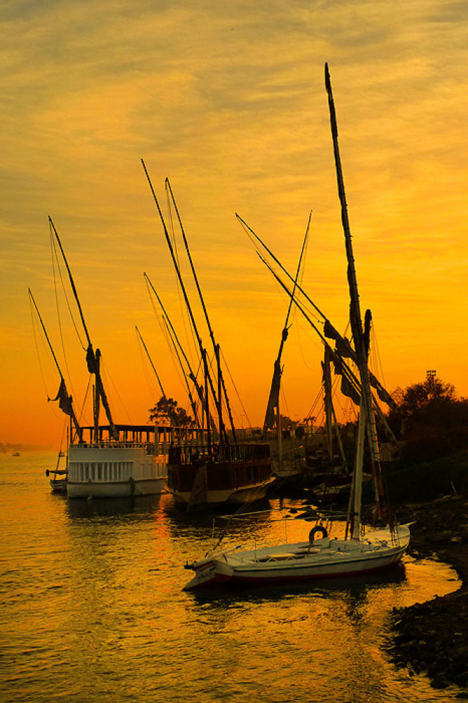 Photo in Travel #nile #egypt #egptian #boats #sunset #evening #moor #mooring #night #dusk
