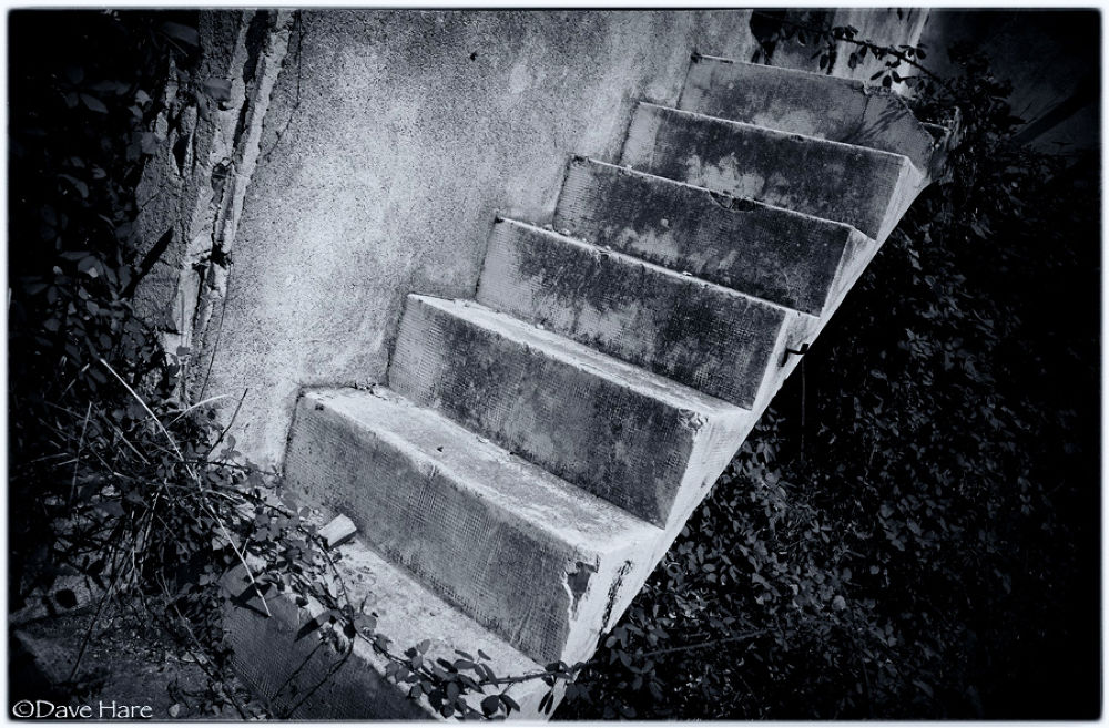 Well worn steps by davehare