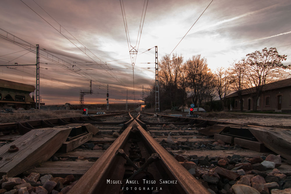 Camino al ocaso - Way to sunset by Miguel Angel