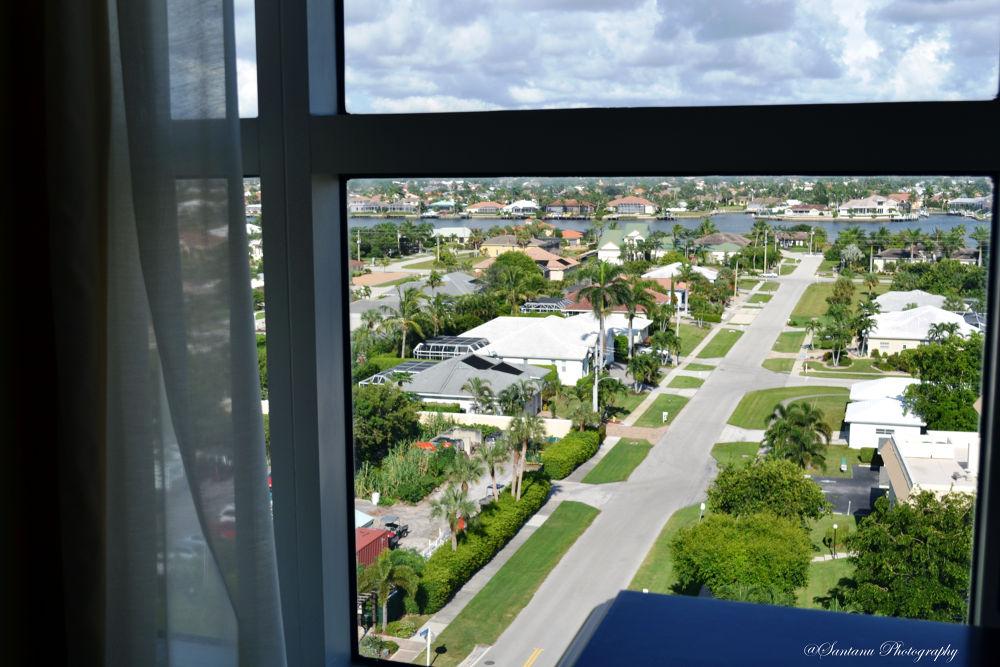 Window View....... by sdas