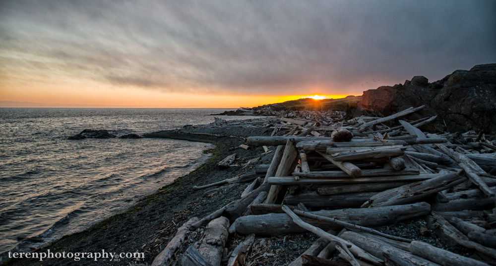 Friday the 13th Sunset at South Beach, San Juan Island. by Teren Photography