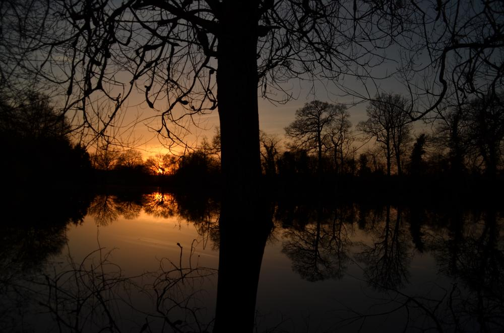 Winter sunset at my lake - http://la-cour-des-aulnays.wix.com/accueil by Geneviève Karlsson