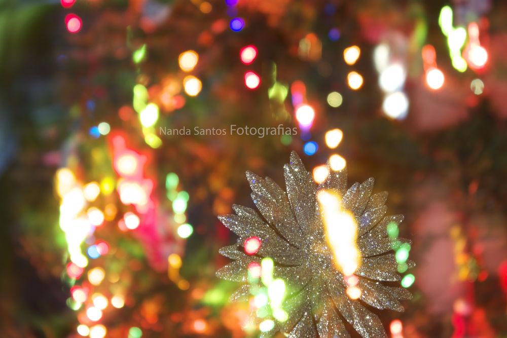 Merry Christmas by Nanda Santos Fotografias