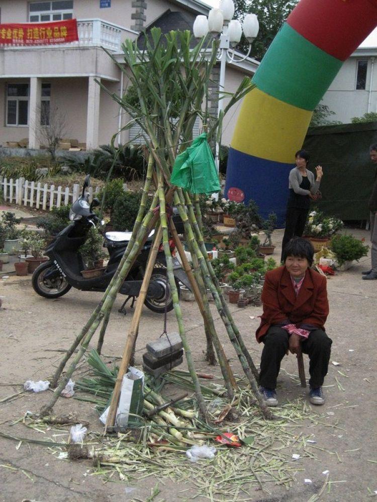 Fenghua_Tengtou_Village-115 by Arie Boevé