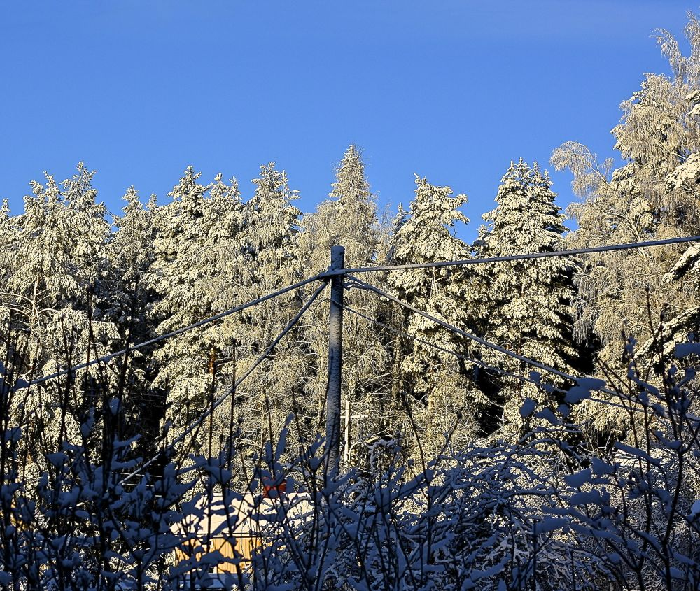 Electricity pole... -12,5°C by SakariPartio
