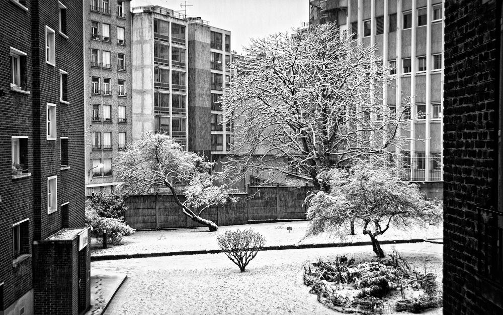 PARIS SNOW by klepherone