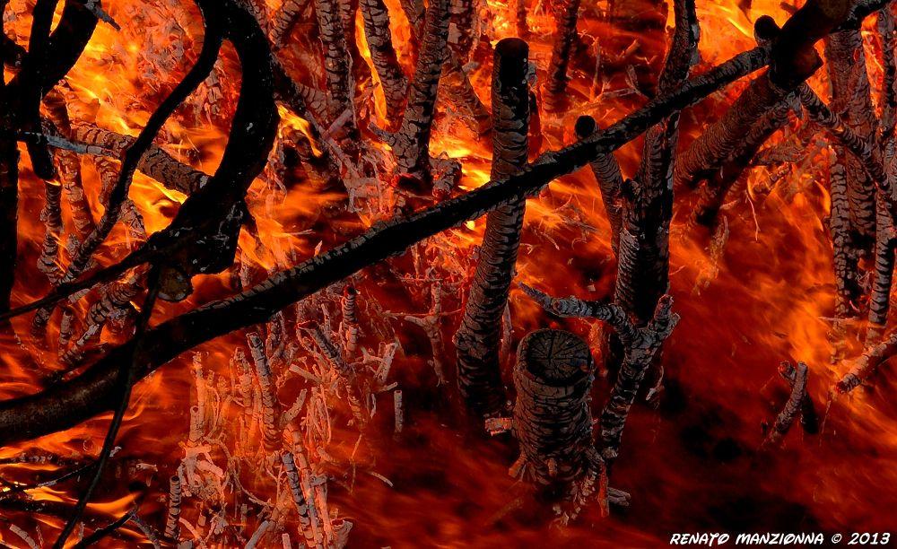 more fire :) by Renato Manzionna