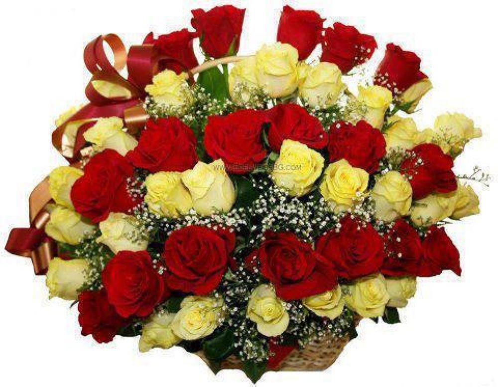 66438_494367027281705_388793803_n by Seyed Mohsen Mirhosseini