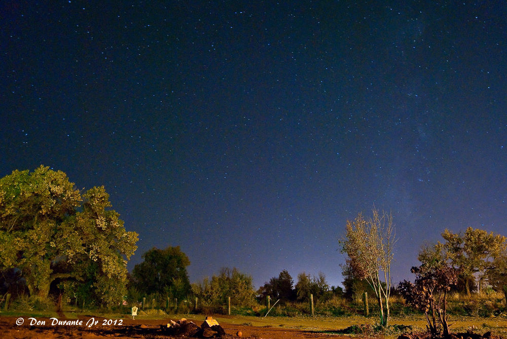 Starry Night by Donald Durante Jr