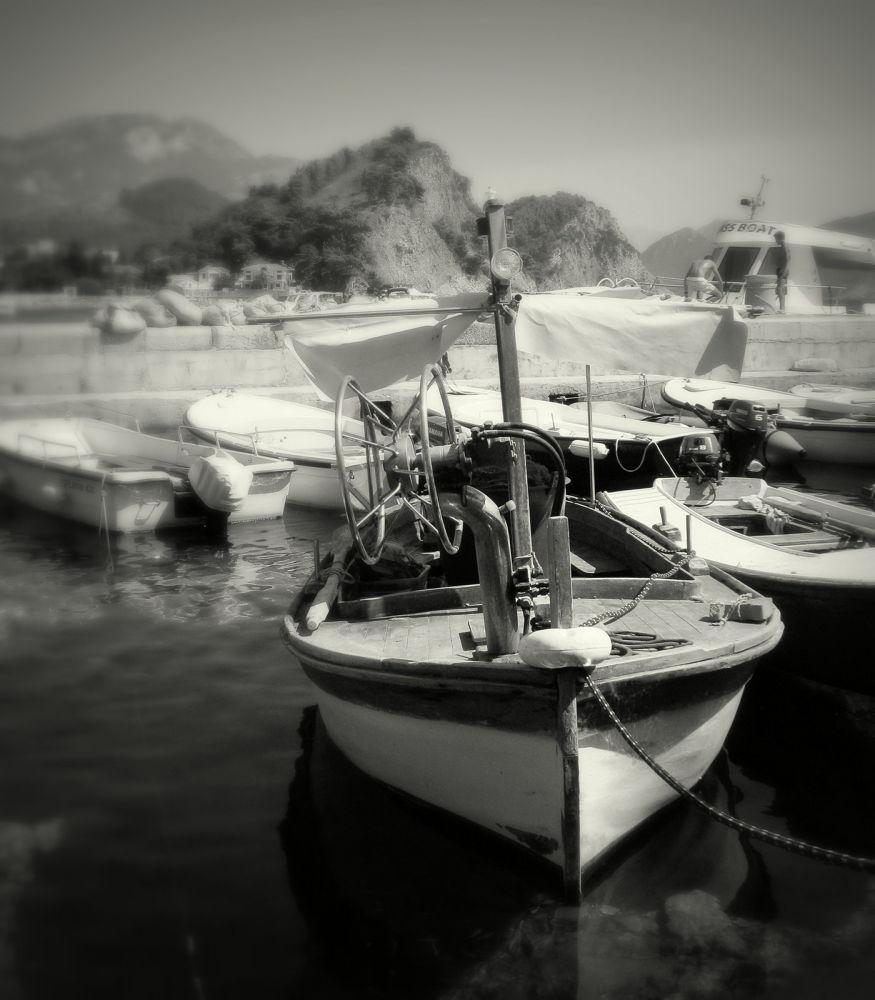 IMG_0951 by Tatjana