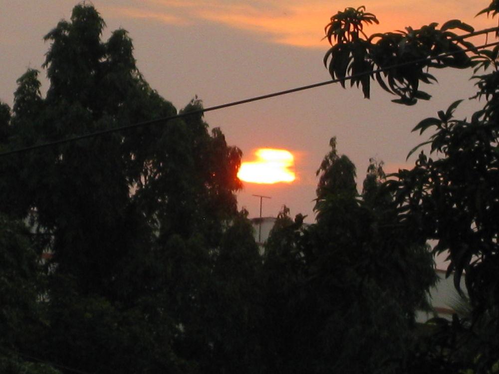 IMG_3182 by Mantha.Sudhakar