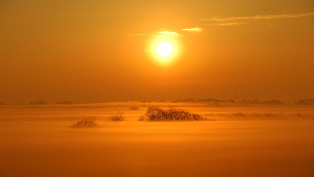 Photo in Landscape #fog #morning #sunrise #sun #mist #ypa2013