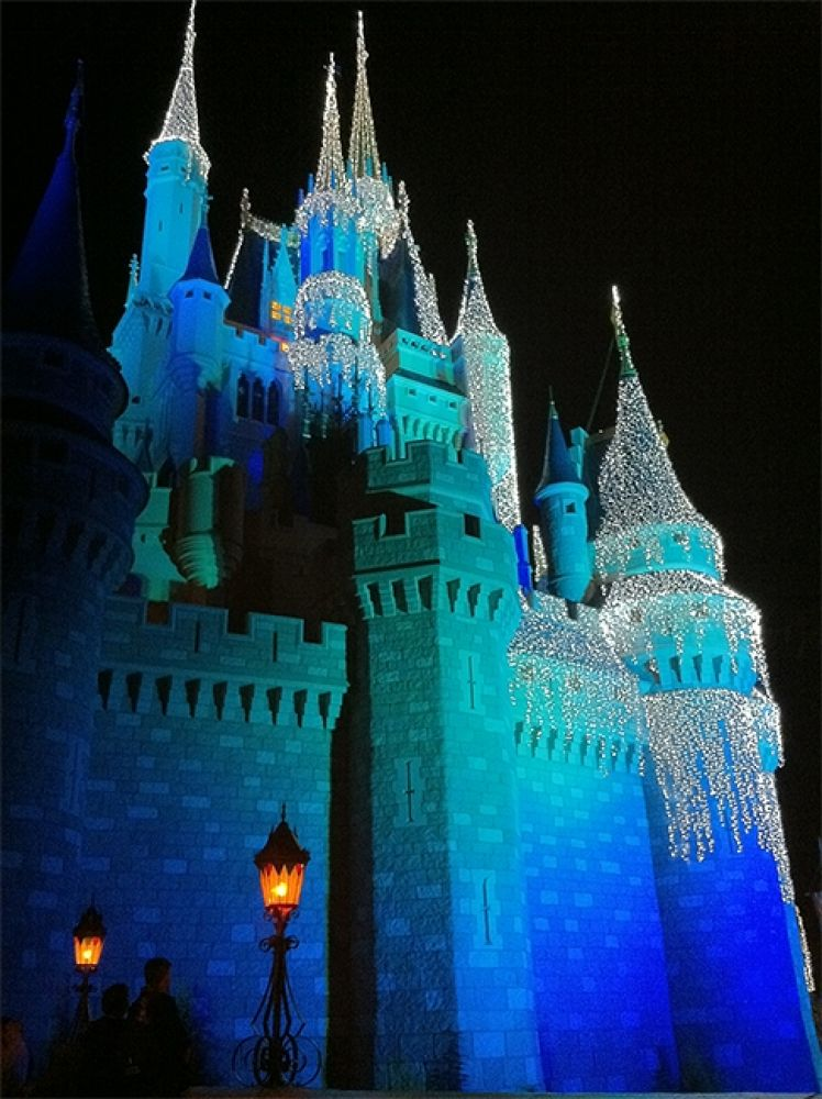 Photo in Random #lights #castle #cinderella #magic #kingdom #walt #disneyworld.