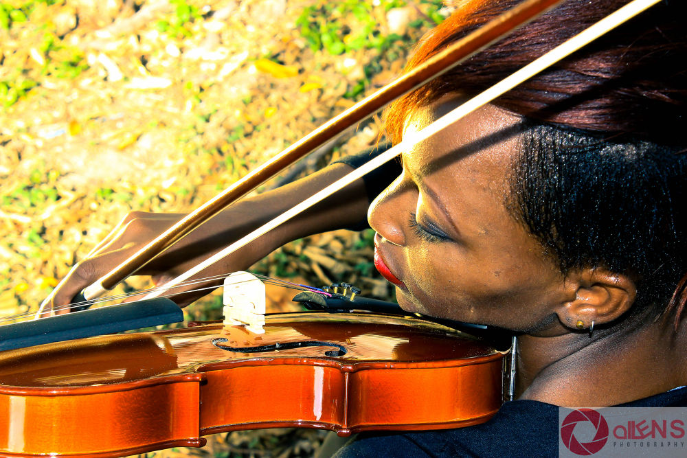 Violinist by Raynor Allen