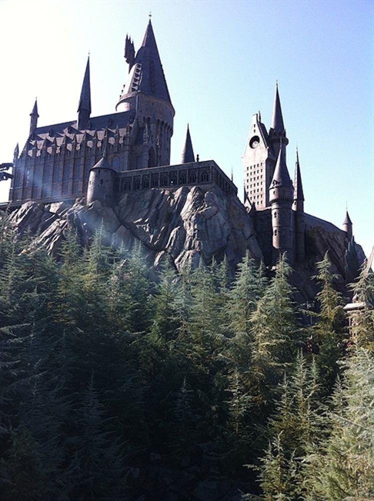 Photo in Random #hogwarts