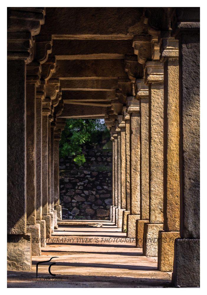 DSC_5875 by Vivek Kalla