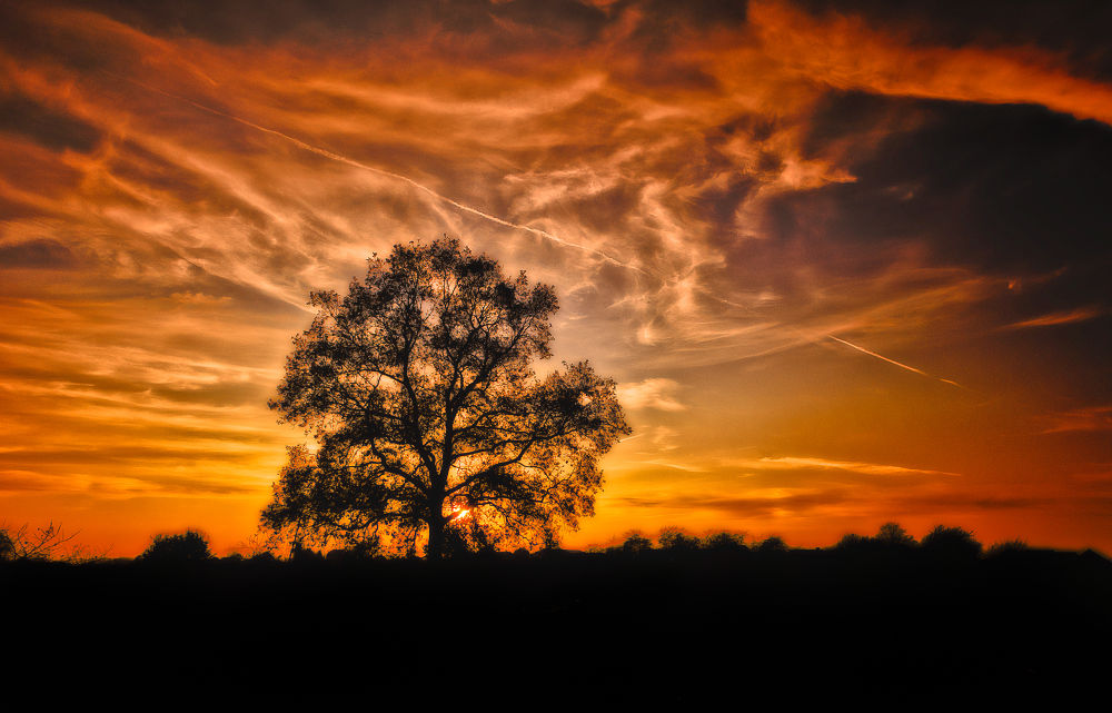 November Sunset by Stef Boey